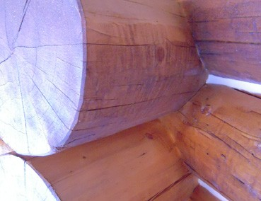 Tops-of-logs-not-stained-and-not-brushed-in