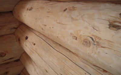Logs-Prepped-and-Look-Great