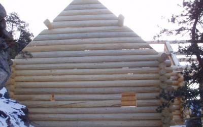 Logs-Set-3